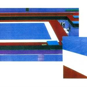 Gymnastic free exercise field carpet gymnastic equipemnts