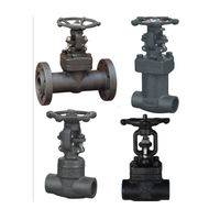 Gate valves,Bellow seal gate valve,A105 gate valve,Stainless steel gate valve,Forged steel gate valve,API gate valve