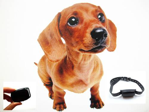 gps pets tracker mini gps tracker dog collar tracker tkstar pet tracker portable tracker