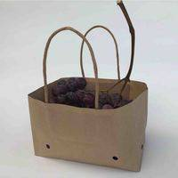 paper bag for table grapes,grape paper bag,paper grape bag