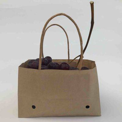 wet strength kraft paper bag for table grapes with twisted handle