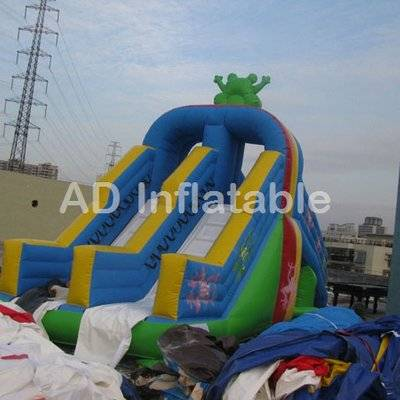 Frog water slide park with detachable pool/customized indoor water parks supplier