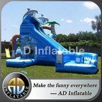 Tropical Slide,Dual water slide,Curved Dolphin Water Slide,backyard water slide,commercial inflatable slide,commercial pool water slides