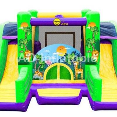 Professional Double Slide Inflatable Castle, funny Inflatable Castle