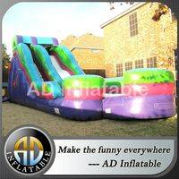 Commercial waterslides,Inflatable ladder slide,Kids waterslides