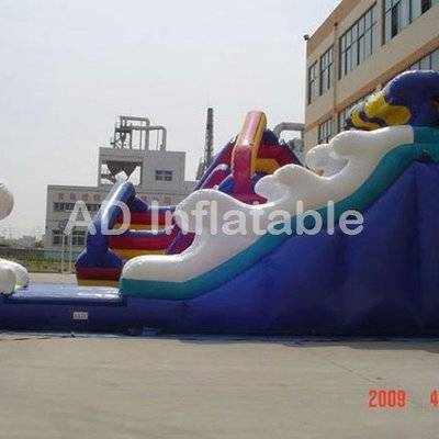 Inflatable water dry slide inflatable riptide slide