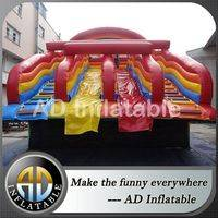 Water slide for pool,Water park water slide,Water park slide for sale
