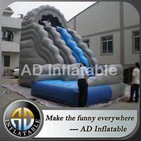 Wild rapids slide,Wild rapids inflatable slide,Water slide wild rapids