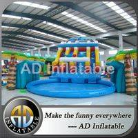 Pool slides water slide,Inflatable Pool Water Slide,Cheap inflatable water slides