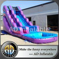 Cheap Water Slide sale,Extreme water slide,Purple waterslide