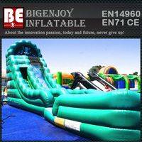 Inflatable Water Slide,Jumbo Water Slide,Jumpers Water Slide