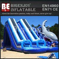 Giant water slide with pool,double tube water slide,water slide with pool