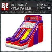 New design water slide,garden water slide,two lines water slide