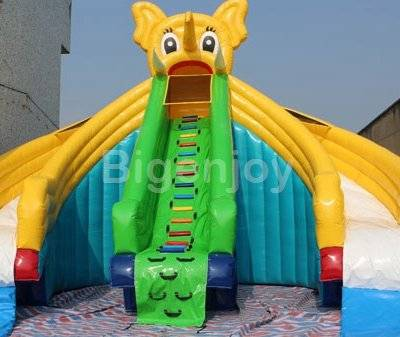 Inflatable Water Slide pool game