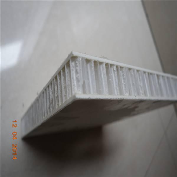 Gel Coated Fiberglass/FRP PP Honeycomb Panels for Light