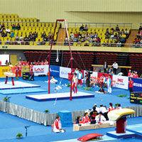 Premium quality gymnastic equipment flying ring for competition
