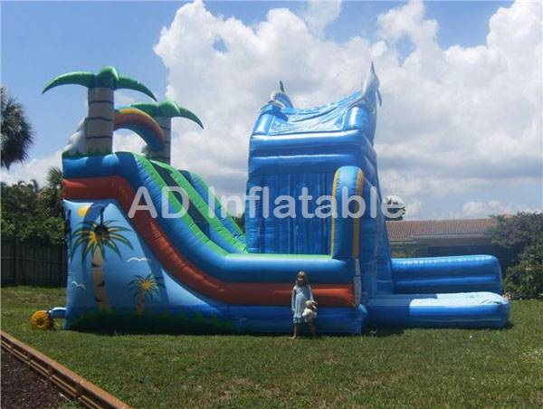 Combined Wet and Wild tropical & dolphin Dual Water Slide/commercial