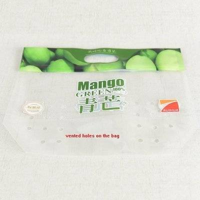 Plastic Ziplock Laminated Pouch Mango Packaging Bag